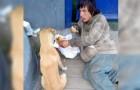 Obdachloser teilt sein Essen mit einem Straßenhund. Wer wenig hat, gibt scheinbar mehr
