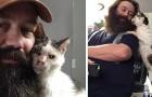 Um homem salva um gatinho surdo abandonado: ele não consegue parar de mostrar amor e gratidão