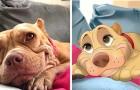 Una ragazza trasforma gli animali domestici in personaggi Disney: i suoi disegni ci riportano all'infanzia