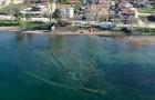 Turchia, le rovine di un'antica chiesa tornano a vedersi sul fondo del lago, ora limpido per il lockdown