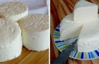 Queijo fresco feito em casa: a receita para prepará-lo com apenas 3 ingredientes