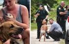 Autistischer Junge verläuft sich und wird Stunden später wiedergefunden. Seine Hunde beschützten ihn die ganze Zeit