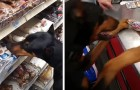 A dog chooses his favorite snack and brings it to the cashier to
