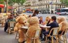 Eine Bar setzt riesige Teddybären ein, um den Abstand zwischen den Tischen zu vergrößern