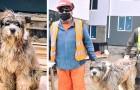 Un cane randagio fa amicizia con un gruppo di muratori al cantiere: ora è il loro