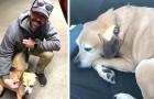 Een jongen legt meer dan 2000 km af om een hond naar zijn terminaal zieke baasje te brengen