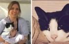 Een kat die nog nooit gemiauwd had, maakt het hele gezin 's nachts wakker en redt hen van een gaslek