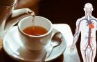 6 tipos de chás ricos em propriedades benéficas para a saúde: verdadeiros elixires para o nosso bem-estar