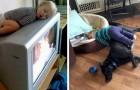 12 crianças que dormiram nos lugares e posições mais impensáveis