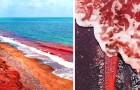 Hormuz, l'isola dove sabbia e mare si tingono di rosso in uno scenario da film fantascientifico