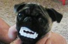 These 27 masked dogs are HILARIOUS!!