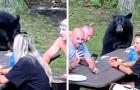 Ein hungriger Bär gesellt sich unerwartet zu einer Familie während eines ruhigen Picknicks im Wald