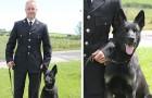 Een politiehond slaagt er op de eerste dag van zijn dienst in om een vrouw te vinden die verdwaald was met haar zoontje