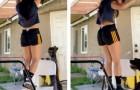Uma garota faz ginástica em casa: seu adorável cachorro pensa que ela está em apuros e decide