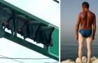 11 photos amusantes montrent que l'été n'épargne personne