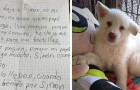 A child takes his little dog in to a shelter and leaves him there: