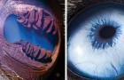 Deze fotograaf legt de ogen van mensen en dieren van heel dichtbij vast: de foto's lijken uit de ruimte te komen