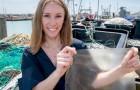 Ein Student hat aus Fischabfällen eine biologisch abbaubare Folie hergestellt, die Plastik ersetzen könnte