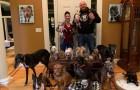 Una coppia spende 55.000$ per rendere la casa un luogo più confortevole per i suoi 21 cani anziani