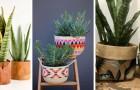 10 trovate accattivanti per realizzare splendidi porta-vasi fai-da-te e arredare con gusto