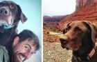 Hij ontdekt dat zijn geliefde hond kanker heeft en maakt een lange en onvergetelijke reis met haar