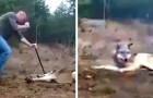 A man risks his life to save a wild wolf caught in a trap