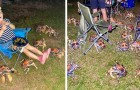 Australia: decine di enormi granchi affamati fanno irruzione al barbecue di alcuni campeggiatori