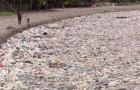 Honduras, 100 Tonnen Plastikmüll sind in die Strände der amerikanischen Nation eingedrungen...
