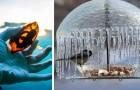 Madre Natura non smette mai di stupirci: 20 foto mostrano il suo lato più sorprendente