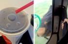 15 persone che hanno iniziato la loro giornata con il piede decisamente sbagliato