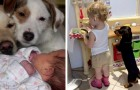 15 photos that testify to the deep affection that can be established between a child and his dog