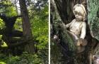 20 personnes qui se sont retrouvées devant des choses étranges et inquiétantes pendant leur randonnée dans les bois