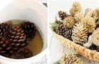 La méthode la plus simple pour blanchir les pommes de pin et les préparer pour des décorations fantastiques