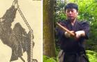 Un'università giapponese lancia il primo corso di studi sui ninja: una laurea singolare e ricca di tradizione