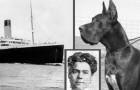 Deze vrouw stierf op de Titanic omdat ze haar hond niet in de steek wilde laten