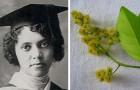 La storia di Alice Ball, la ricercatrice afroamericana che trovò una cura per la lebbra senza ricevere alcun merito