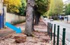Questa città francese sta rimuovendo l'asfalto dai marciapiedi per far