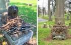 Al posto dei fiori le persone stanno lasciando dei bastoncini sulla tomba di questo cane, per il suo centenario