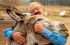 Un asino e un cavallo sopravvivono all'incendio della fattoria: l'abbraccio con il padrone è commovente