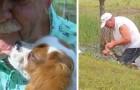 Un homme de 74 ans sauve son chien des mâchoires d'un alligator en n'utilisant que la force de ses mains