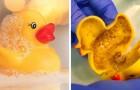 I giochi di gomma per il bagnetto possono essere veri contenitori di funghi e batteri: l'allarme degli esperti