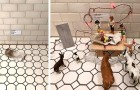 Dottern lämnar alltid sina smutsiga strumpor överallt i huset: mamman förvandlar dem till konstverk