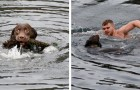 Un jeune homme plonge dans des eaux glacées et sauve un chien pris dans une corde