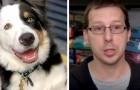 Un cane entra in un negozio e attira l'attenzione dei dipendenti: poco dopo scoprono che era stato rapito