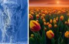 16 afbeeldingen vol verwondering bevestigen dat Moeder Natuur een artieste is met een onbereikbaar talent