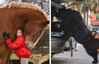 """15 """"extra large"""" dieren die in staat zijn de mensen om hen heen klein te laten lijken"""