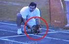 Kijk hoe deze teckel de hardloopwedstrijd wint.. echt hilarisch!