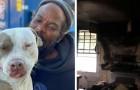 Un senzatetto riesce da solo a mettere in salvo tutti gli animali da un rifugio in fiamme