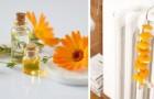 Parfumer en utilisant les radiateurs : les solutions DIY économiques et agréables