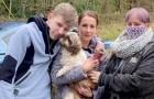 Pensava fosse stato investito, poi ritrovano il suo cagnolino per puro caso dopo ben 8 anni